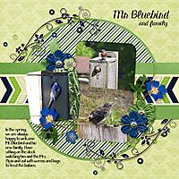 Mr-Bluebird.jpg
