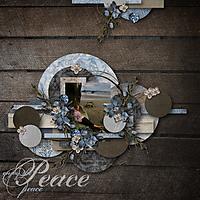 Enjoy_the_Peace.jpg