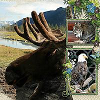 AlaskaWildlifeConservationCenter_Pg2.jpg