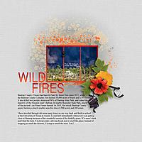 WILD-FIRES-4GS-web.jpg