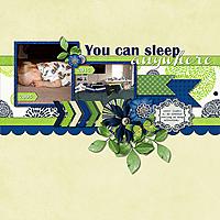 2015-01d_You_Can_Sleep_Anywhere.jpg