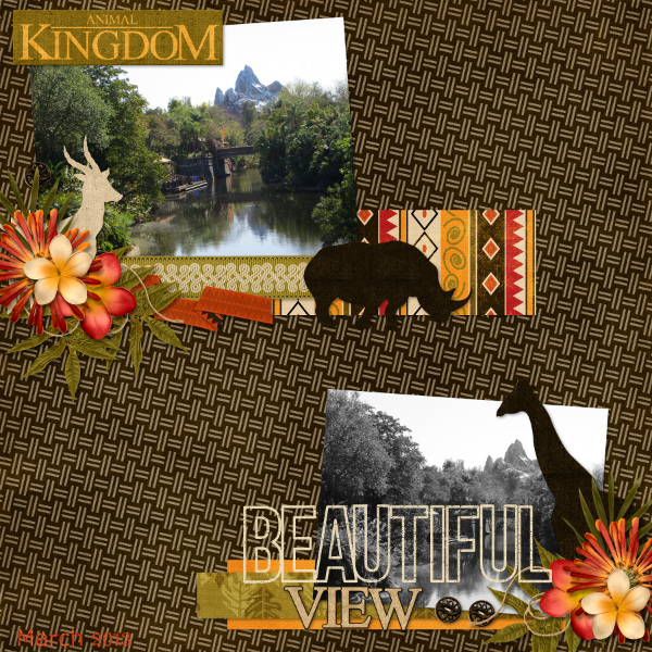 Beautiful View {Animal Kingdom 2013}