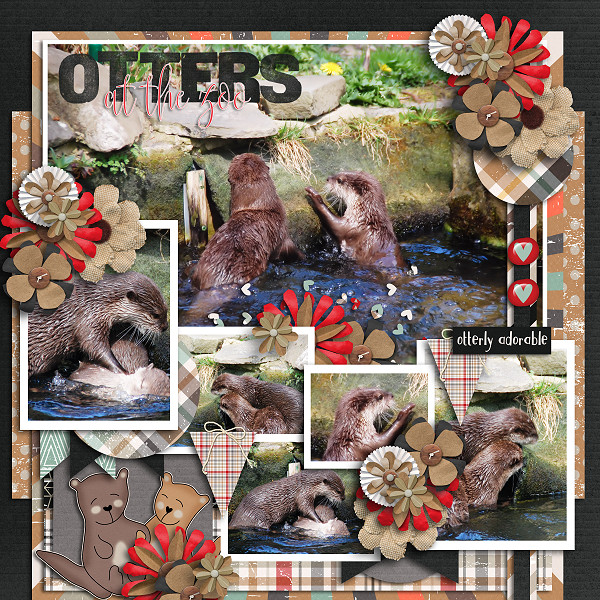 Otters at the Zoo