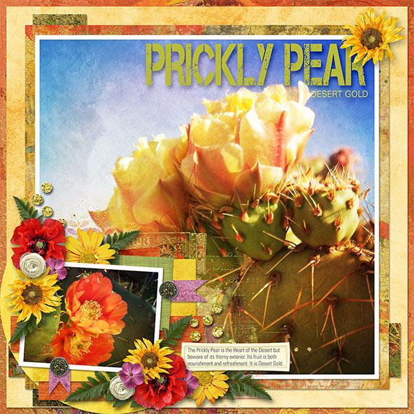 PRICKLY PEAR - DESERT GOLD