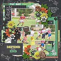 2013-07-11-defendtiltheend_sm.jpg