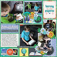 Homeschool-Tinci_APD3_1.jpg