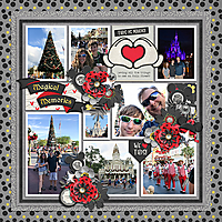 Robin_Captured-Memories-14-600.jpg