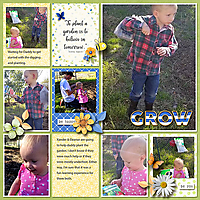 Tinci_TIA3_neia_flowersinsp_robin_web.jpg