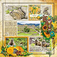 sunflowercmg1-600.jpg