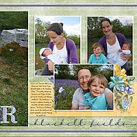 x20190516-Feizor-Bluebell-Fields-_English-Silers_-20200831-Side-Two.jpg