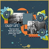 Enjoy_life_sized.jpg