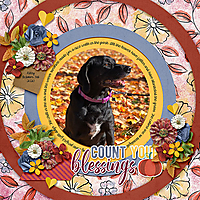 count-your-blessings10.jpg
