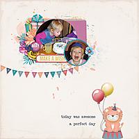make-a-wish-birthday-girl.jpg