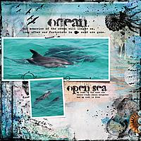ocean--open-sea.jpg