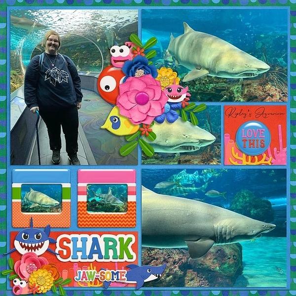 Shark Ripleys Aquarium