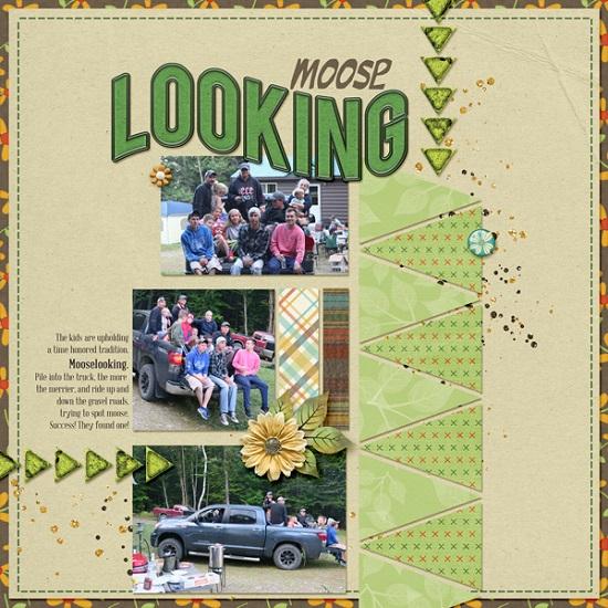 moose_looking