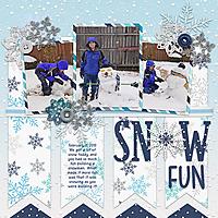 20100211-Snow.jpg