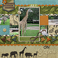 2018-07-06-on-safari.jpg