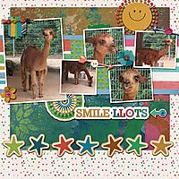 2018-07-06-smile-llots.jpg