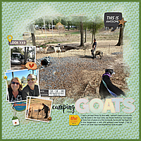 2020-12-12-Camping-with-goats.jpg