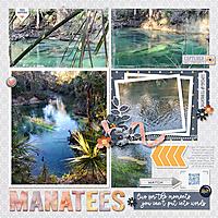 2021-02-03-Manatees.jpg