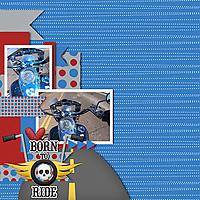 600_born_to_ride_Mfish_SideSplitter_01.jpg