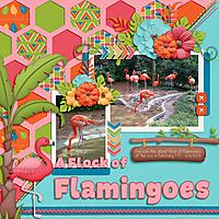 A-Flock-of-Flamingoes.jpg