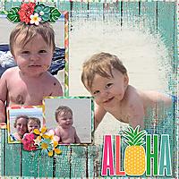 Aloha14.jpg