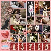 Aspen20019_DogPaws_LJ_20in20Album_Q1_03left_MF_600.jpg