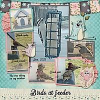 BirdsJan2021_Joyful_SP_KISSPhotoStacker_04_MFish_600.jpg