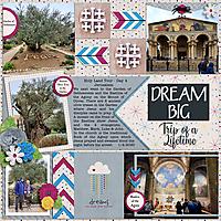Dream-Big---Trip-pf-a-Lifetime.jpg