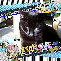 FeralLoveBigLifeTem600.jpg