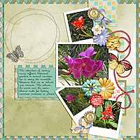 Flower_Garden_small1.jpg