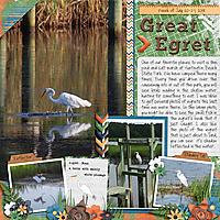 Great-Egret.jpg