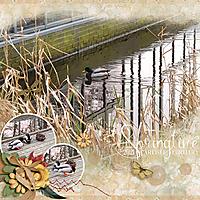 KCO_SpringtimeFebruary2021.jpg