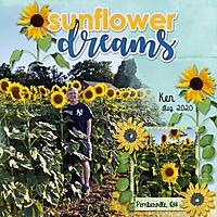 KenSunflowers2020_SunflowerDrms_AHD_GoGetters3_012_MFish_600.jpg