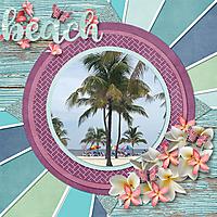 Life_s_a_Beach1.jpg