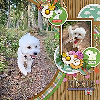 MFish_Big_Little9-tmonette_dog-ck01.jpg