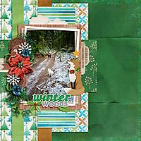 MFish_HolidaySolos-aimeeh_christmaswoods-ck01.jpg