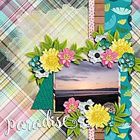 Paradise20.jpg