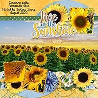PembSunflowers2020_SunshineyDay_AHD_Wanderlust_T_01_MFish_600.jpg
