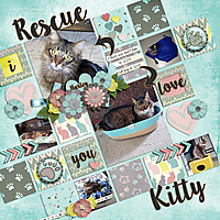 Rescue-Kitty.jpg