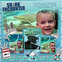 Shark-Encounter-web.jpg