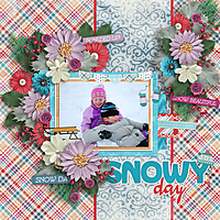 Snow-2009_600_.jpg