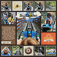 Snowbird-coaster.jpg