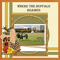 Where_the_Buffalo_Roamed_small.jpg