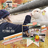 at-the-petting-zoo.jpg