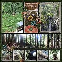 forest_scenes.jpg