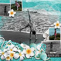 gallery_GS_Beach_life_MFish_BlendedClusters_ForShore_03.jpg
