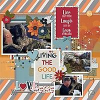 living_the_good_life.jpg